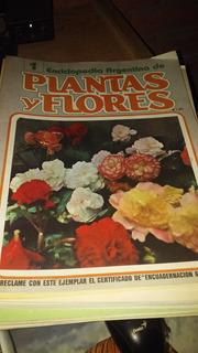 Enciclopedia Argentina De Plantas Y Flores 1986