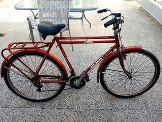 Bicicleta Inglesa Olmo