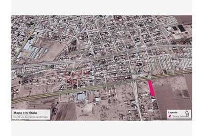 Terreno Carr Torreon - San Pedro Jaboncillo A Pie De Carretera