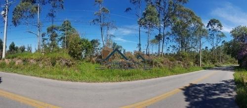Imagem 1 de 6 de Área De 63 Mil M2 Em Caucaia Do Alto, A 2 Km Do Centro, No Asfalto. - 419