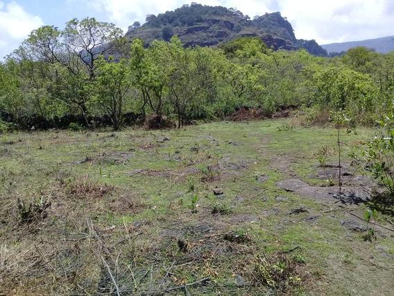 Terreno En Tepoztlán Mor. 1hectarea