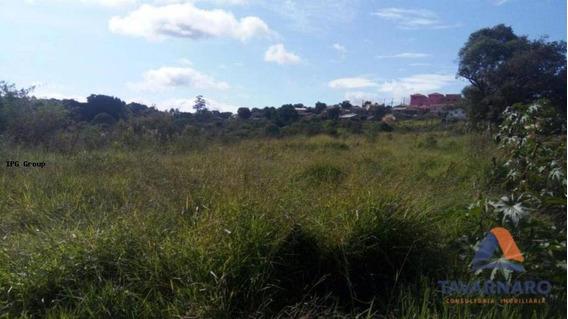 Área Para Venda Em Ponta Grossa, Olarias - Ar0015-tavb