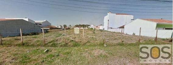 Terreno Para Locação Em São José Dos Pinhais, Aviacao - 313chac0006 Apolo
