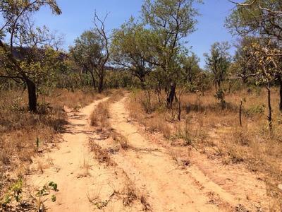Fazenda Em Balsas - Ma 6.700 Hectares P/ Agricultura - 482