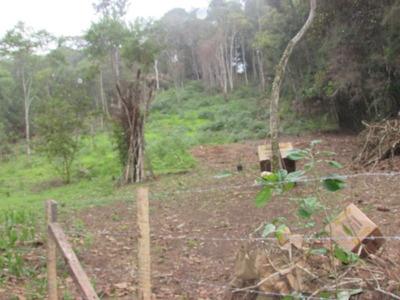 Belo Terreno Semi-plano, Cercado, Luz Porta, Ref: 04546