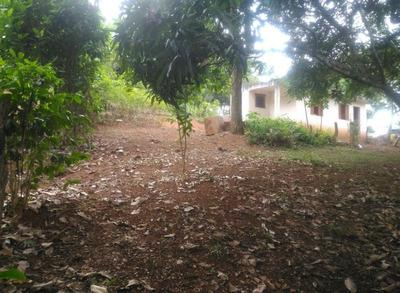 Terreno 1250m2 Com Escritura, Casa Construída, Pé De Fruta