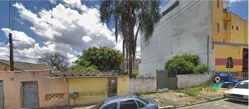 Imagem 1 de 1 de Terreno Residencial À Venda, Vila Ré - Te0027