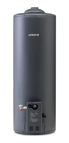 Termotanque a gas natural Longvie Alta Eficiencia T4110 grafito 110L