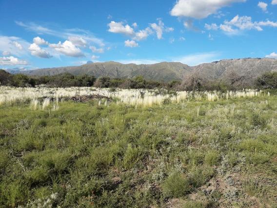 Lotes En Cortaderas San Luis Invierta En Tierras