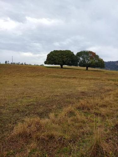 Fazenda Para Venda Em Piraju, Rural - Fazc 100_1-1783632
