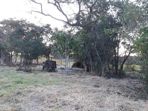 Terreno Em Porangaba