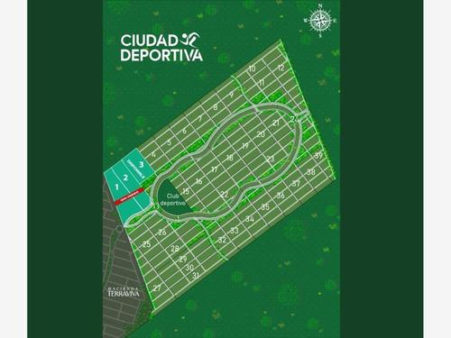 Imagen 1 de 6 de Terreno En Venta Telchac Puerto