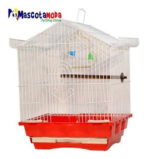Jaula Pequeña Para Aves Economica Con Accesorios