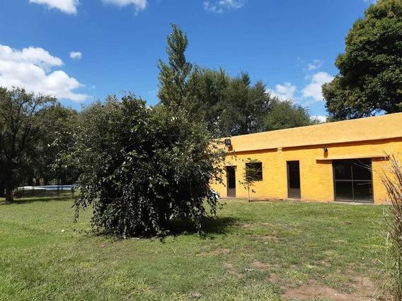 Casa De Campo (quinta) La Domenica