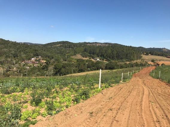 Area Plana 600 M2 Com Bosque No Fundo 22 Mil Aproveite J