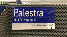 Plaquinha Rua Palestra 20x11cm Palmeiras Feita Em Acrílico