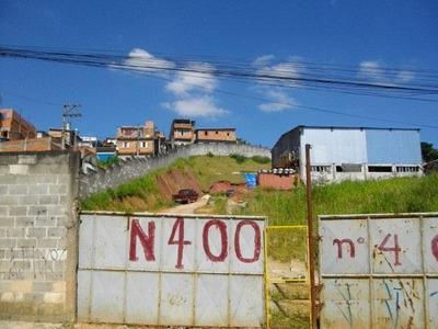 Terreno Em Jardim Colibri, Cotia/sp De 0m² Para Locação R$ 10.000,00/mes - Te120246