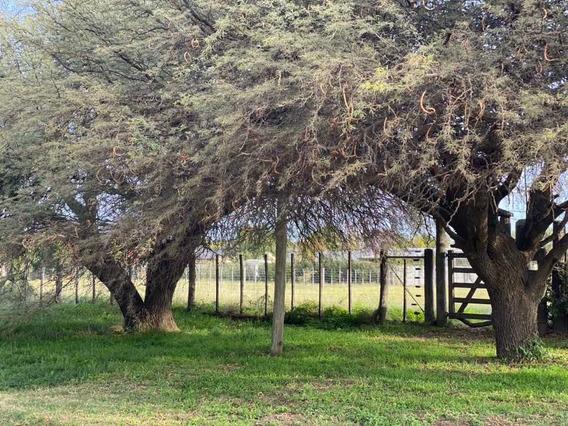 Terreno 30x40 Villa Ángela Toay La Pampa Sobre Gorrión