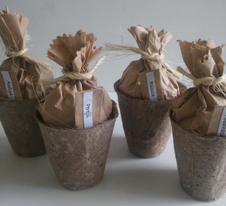170kits De Siembra Ecológico -maceta Biodegradable