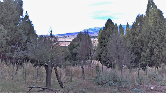 Chacra - 5 Ha, Trevelin, Chubut, Patagonia, Zona Residencial