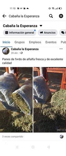 Imagen 1 de 1 de Alfalfa, Heno De Alfalfa, Pan De Fardo