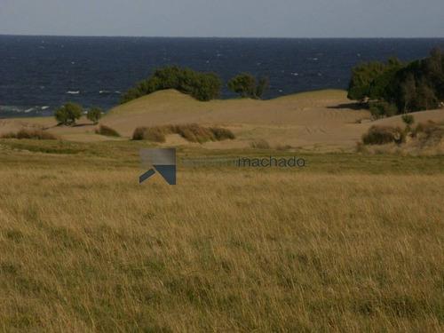 Imagen 1 de 9 de Terreno En Venta Rocha ( La Aguada) -ref:1425