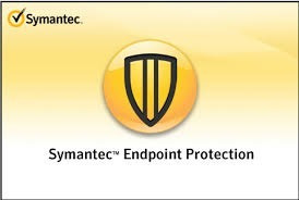 Antivirus Symantec Endpoint 14 Server Ingles