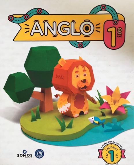 Apostila Anglo Ensino Fundamental Caderno 1 Anos Iniciais