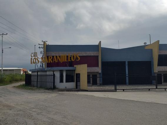 Galpon Industrial Cc Los Naranjillos Código: 401069
