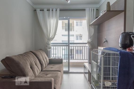 Apartamento Para Aluguel - Planalto, 2 Quartos, 56 - 893033098