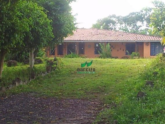 Fazenda À Venda, 610000 M² Por R$ 1.000.000,00 - Centro - Pojuca/ba - Fa0040