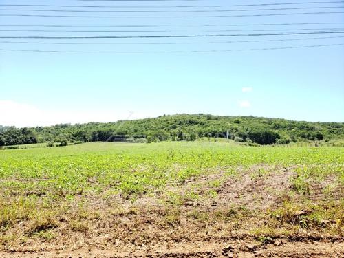 Chacara - Limoeiro - Ref: 4132 - V-1336