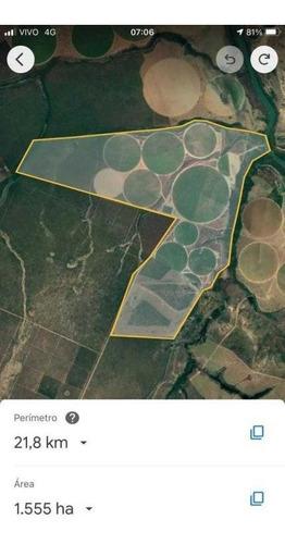 Fazenda João Pinheiro Toda Irrigada  1.600 Hectares 60.000,000,00 - 38004