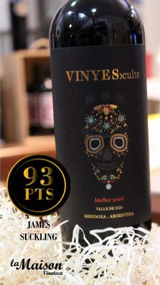 Vino Vinyes Ocults Malbec
