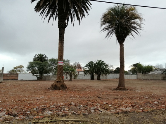 Terreno En Alquiler Colón , Montevideo