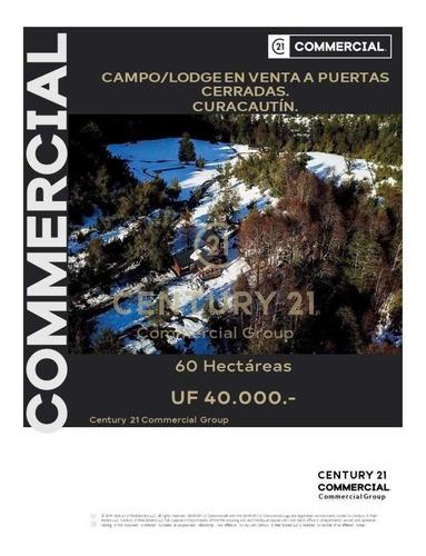 Imagen 1 de 27 de Venta De Lodge O Campo De Ensueño Rodeado De Bosque Nativ...