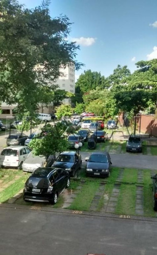 Lindo Apartamento Lauzane Paulista - Mi69156