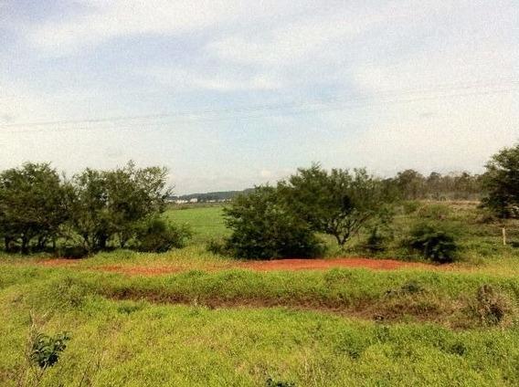 Terreno Em Zona Rural - Nk18101