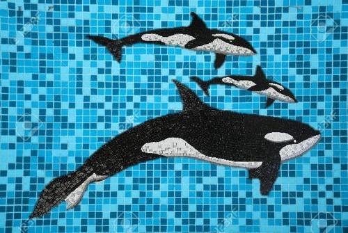 Imagen 1 de 3 de Mosaico Familia De Orcas En Dif. Medidas 2.50, 1.50 Y 90cms