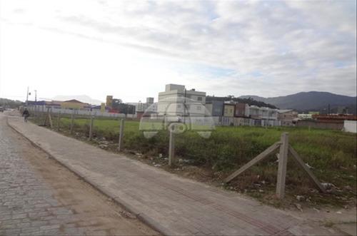 Imagem 1 de 7 de Terreno - Comercial/residencial - 60659