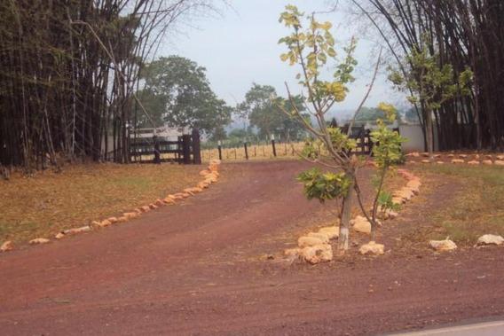 Compre Fazenda Rural À Venda, Zona Rural, São José Do Povo Mt - Fa0028