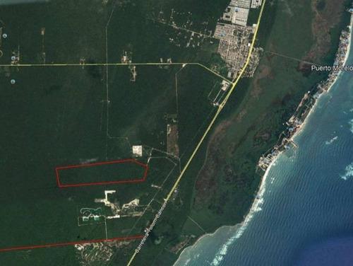 Imagen 1 de 5 de Terreno Ruta De Cenotes Puerto Morelos