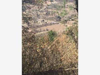 Terreno En Venta San Pedro Tenango