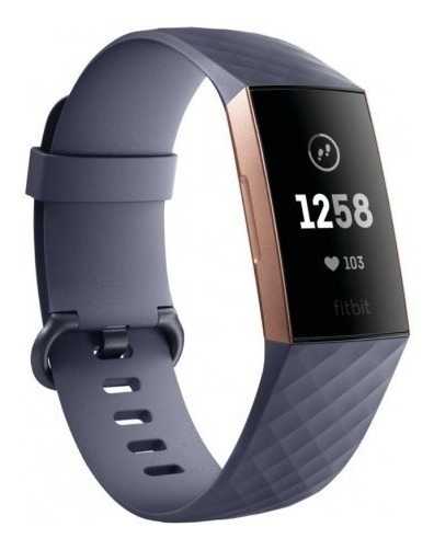 Pulseira Esportiva Fitbit Charge 3 Blue Gray