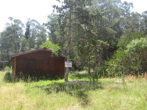 Dos Cabañas Gemelas En Santa Ana Ref 229