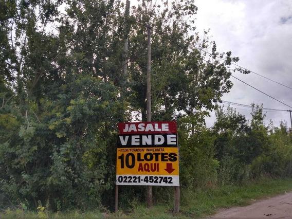 10 Lotes Con Frente A Calle Oportunidad