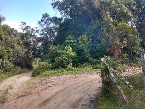 Terreno No Jardim Coronel, Em Itanhaém, Ref. 6023 M H