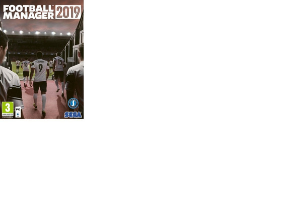 Football Manager 2019 - Pc-dvd(midia Fisica)