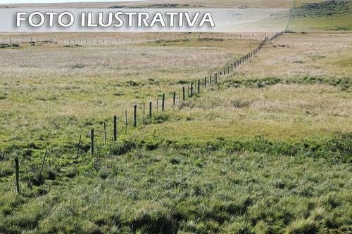 Oferta Única - Terreno 1000m2