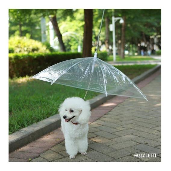 Guarda Chuva Para Cachorro Guia Para Coleira Fazzoletti Pet